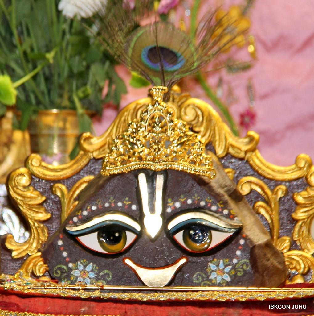 ISKCON Juhu Mangla Deity Darshan 22  Nov 2016 (51)