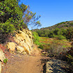 laguna_coast_wilderness_IMG_2233.jpg