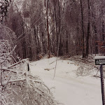 Verglas chemin Dunany.jpg