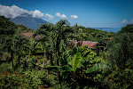 View of Ometepe and Lago Nicaragua from Finca Magdalena