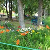 Александра. Своими руками, без посторонней помощи  превратила обычный двор в цветущий сад. Не останавливаюсь на достигнутом, планирую увеличить количество клумб и высадить новые сорта цветов.