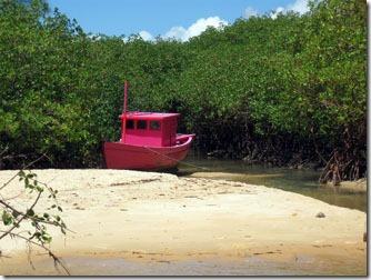 arraial-dajuda-mangue-rio-trancoso-2