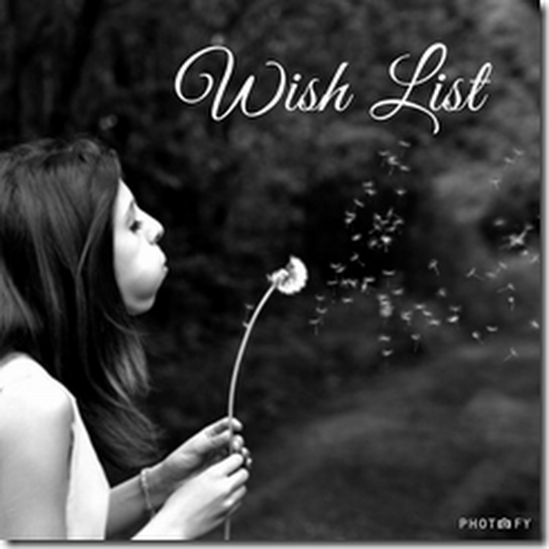 Wish List 5: Historical Romances–1st In A Series