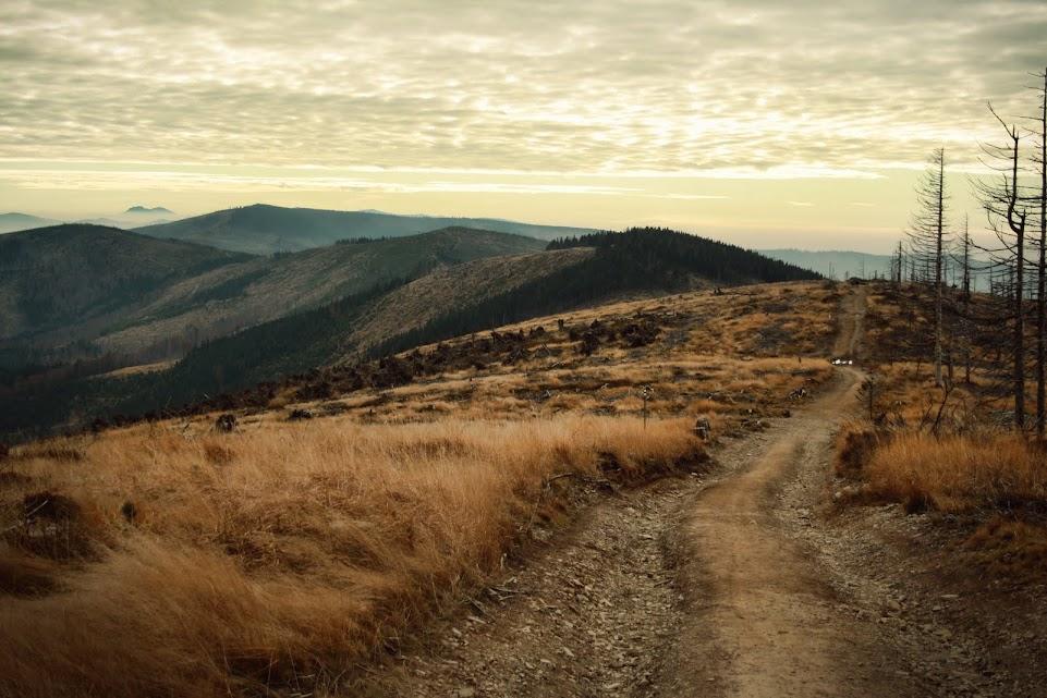 Szlak na Malinowską Skałę