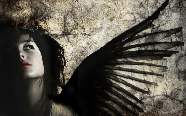 Untitled, Fallen Angels