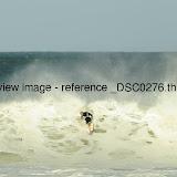 _DSC0276.thumb.jpg