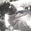 Antonio Manuel Camachu's profile photo