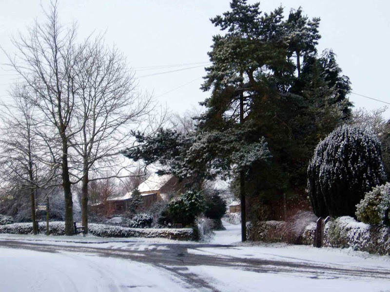 Winter-33