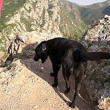 Sortida Sant Salvador de les espasses 2006 - CIMG8296.JPG