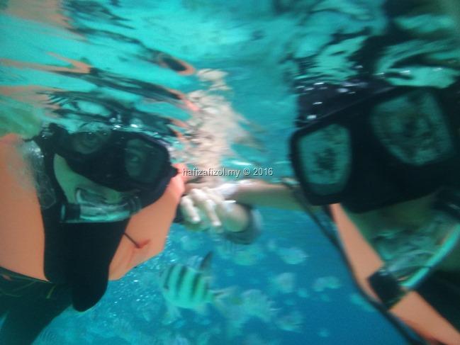 snorkeling pulau redang_4