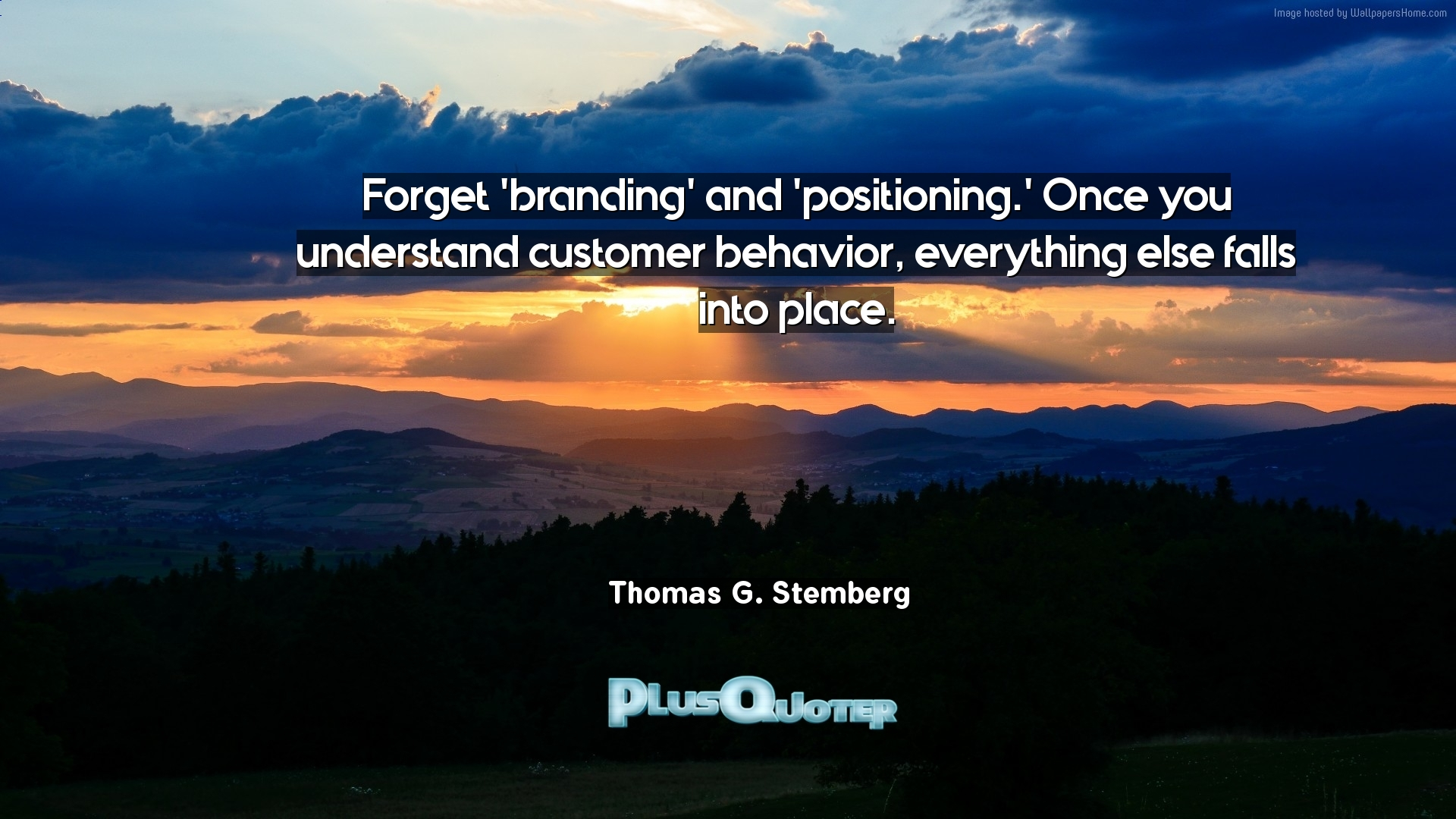 Branding Quotes Forget 'branding' And 'positioning.' Once You Understand Customer