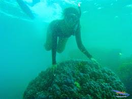pulau harapan, 1-2 Mei 2015 panasonic  04