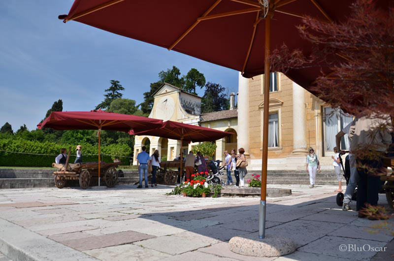 Villa Maser mostra ciliegie 14