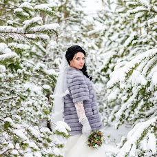 Wedding photographer Alena Dmitrienko (Alexi9). Photo of 21.01.2017