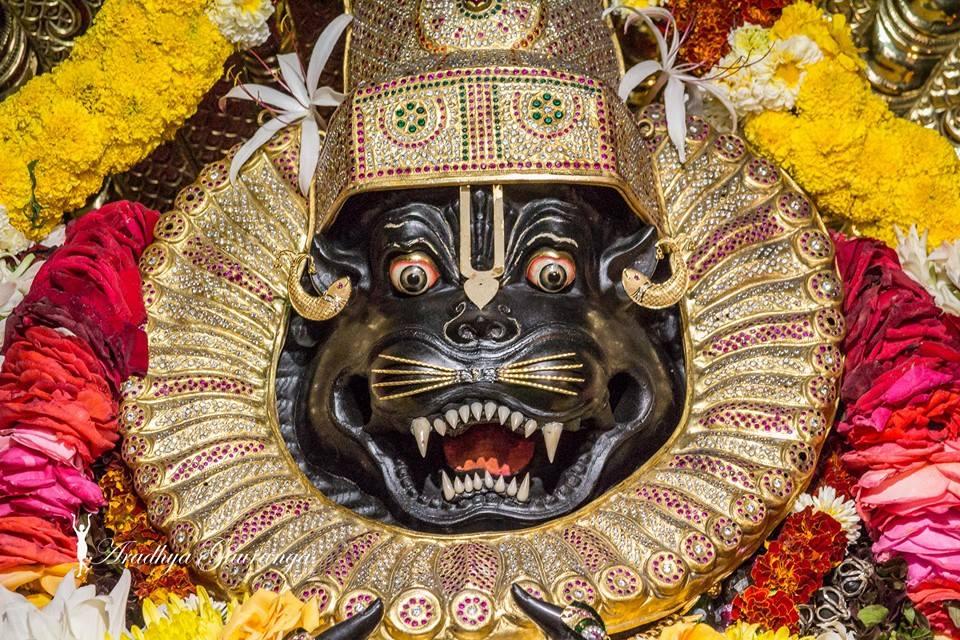 ISKCON Mayapur Deity Darshan 02 Feb 2016 (40)