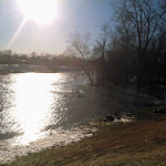 Emily_Scalzo-Flooded_White_River_at_Muncie__Indiana_After_Febru.jpg