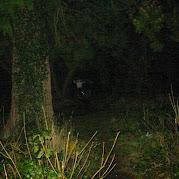 JS Lochgoilhead 2004 025.jpg