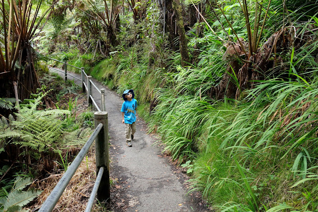 Traveling with kids to Big Island Volcanoes National Park
