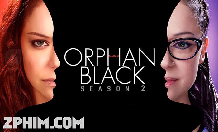 Ảnh trong phim Hoán Vị 2 - Orphan Black Season 2 1