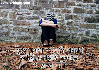 Bengali sad status of 2020
