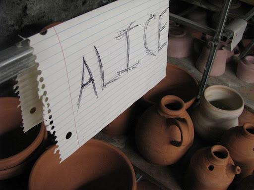 Alice Wandler Photo 2