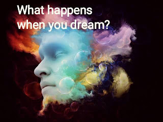 What happens when you dream?