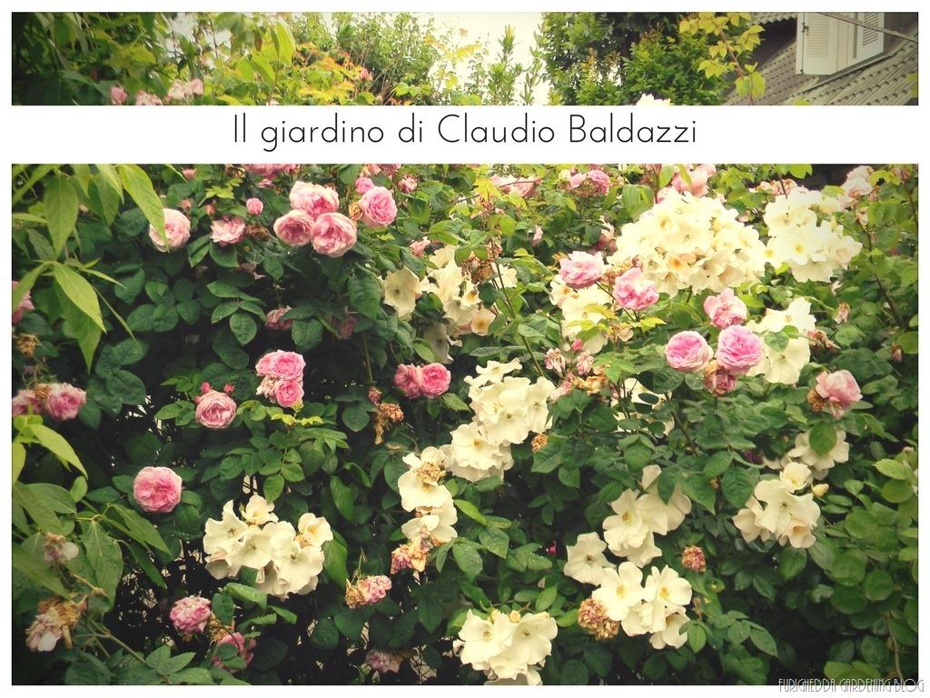[Il+giardino+di+Claudio+%283%29%5B3%5D]