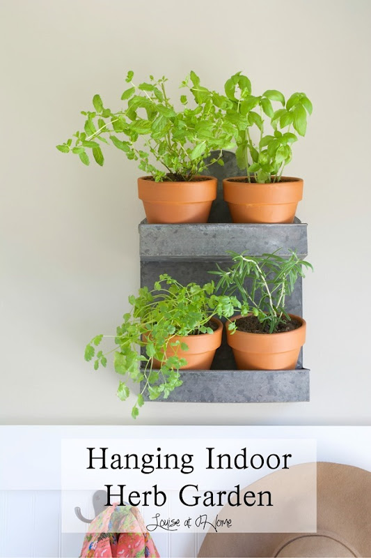 hanging-indoor-herb-garden-collage-louise-at-home