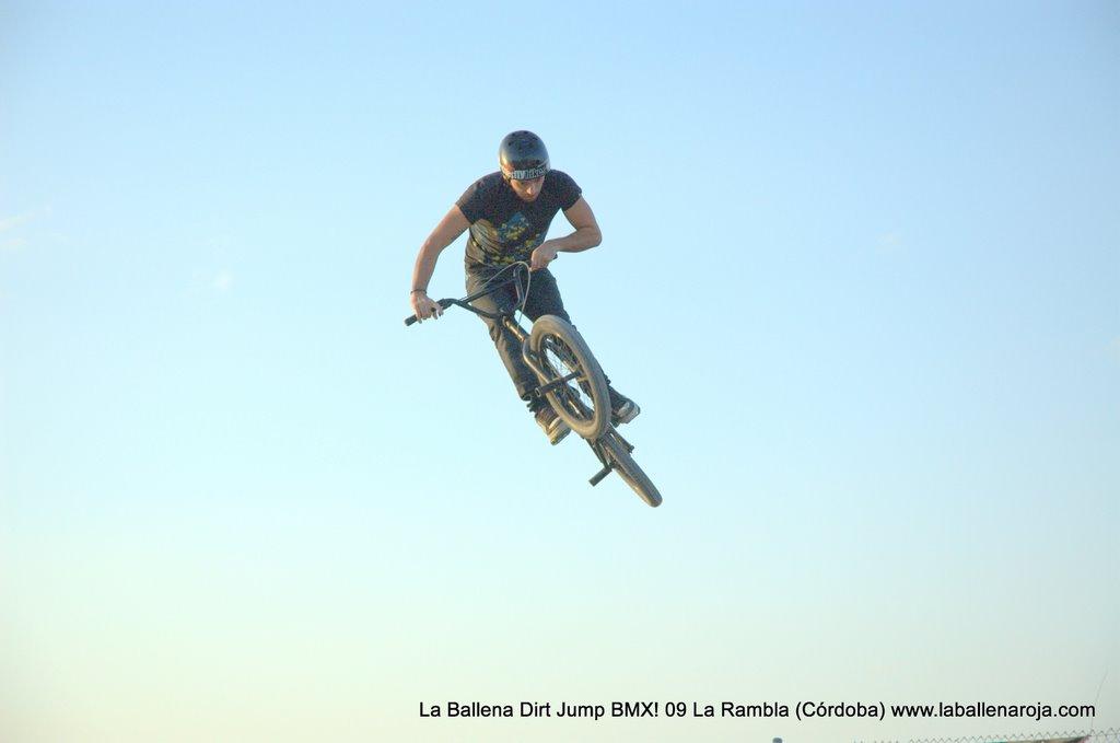 Ballena Dirt Jump BMX 2009 - BMX_09_0138.jpg