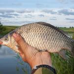 20160612_Fishing_Pryvitiv_053.jpg