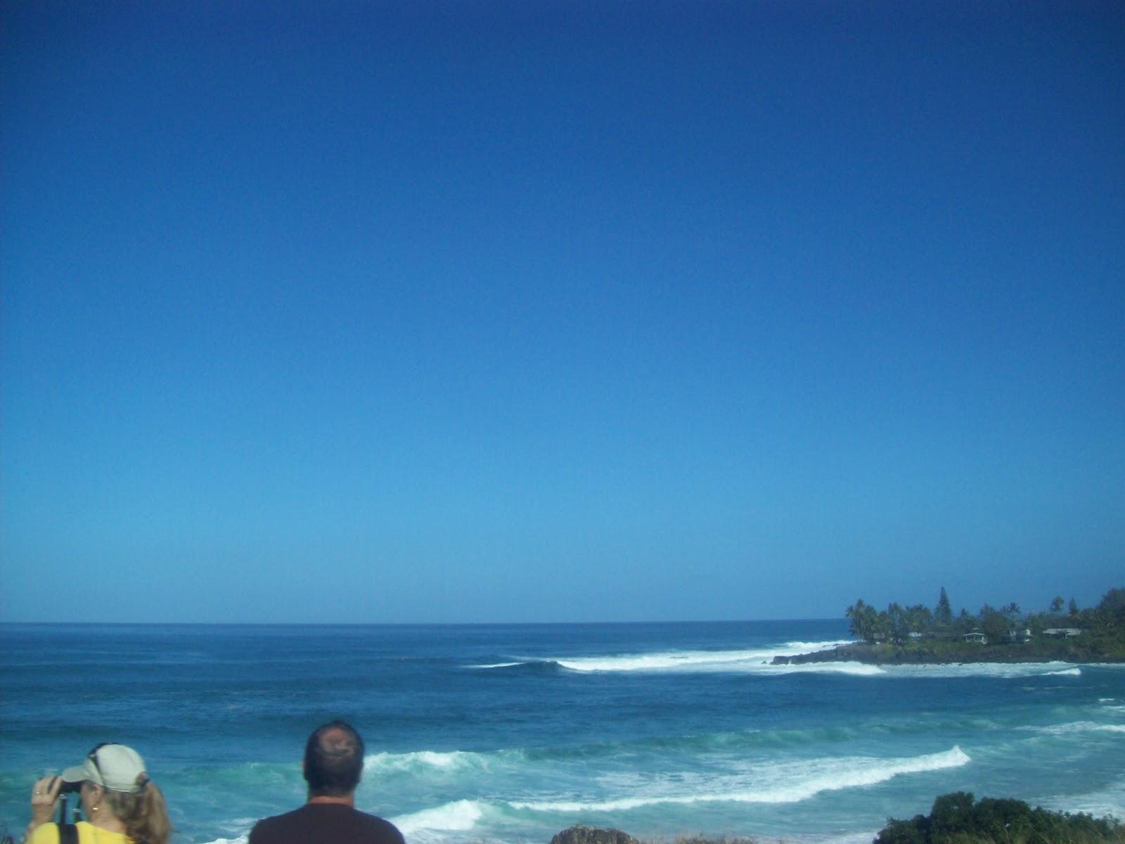 Hawaii Day 3 - 100_6989.JPG