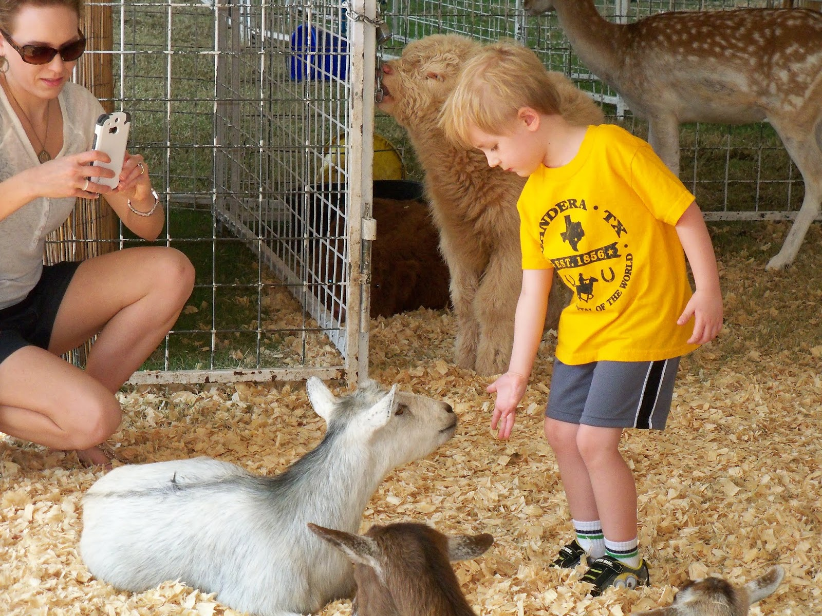 Fort Bend County Fair 2015 - 100_0169.JPG