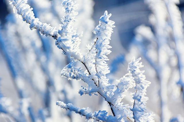Blue snow.jpg