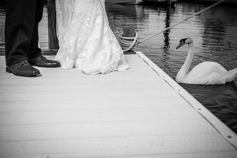 Lauren and Jonathan - Blueflash Photography 475.jpg