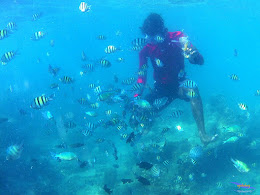 family trip pulau harapan, 1-2 agustus 2015 gopro 29