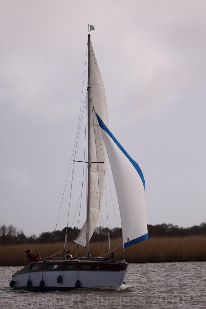 2010 Cruise - Bitternes0078.jpg