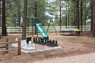 Play Area for the Adults & kids including swings, slide, pong game, and chess & checkers!