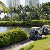 2015 Golf Tournament - 2015%2BLAAIA%2BConvention-1549.jpg