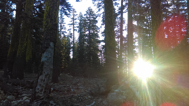 Day 94: Midpoint - Pacific Crest Trail Association