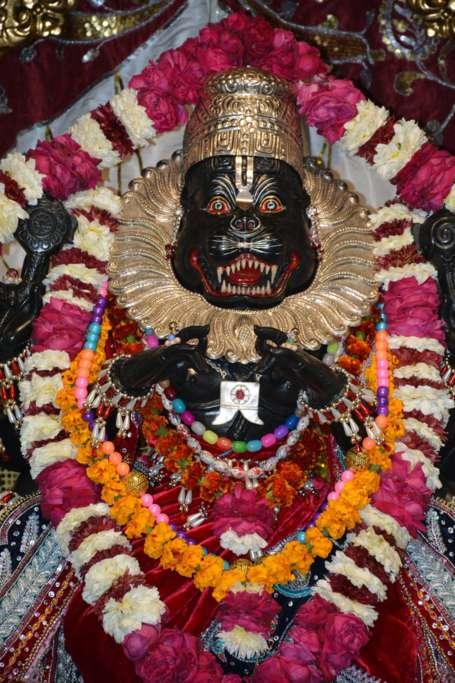 ISKCON Ujjain Deity Darshan 22 Dec 2015 (15)