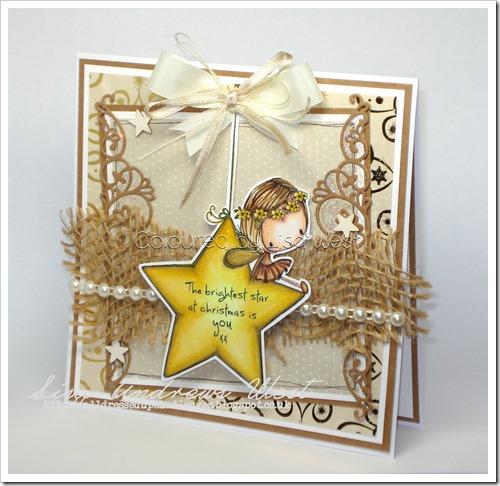 Christmas Star (1)