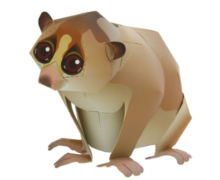 Slow Loris Papercraft