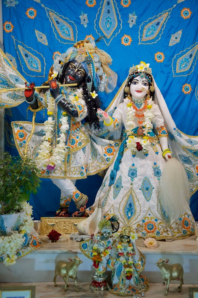 ISKCON New Govardhan Deity Darshan 08 Dec 2016 (33)