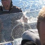 FishingOnCredit