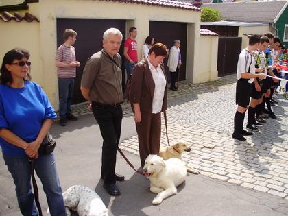 20100529 Hochzeitsspalier - 0011.jpg