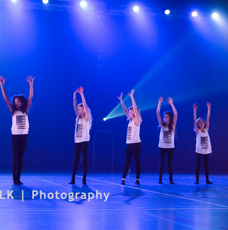 Han Balk Voorster Dansdag 2016-3859-2.jpg