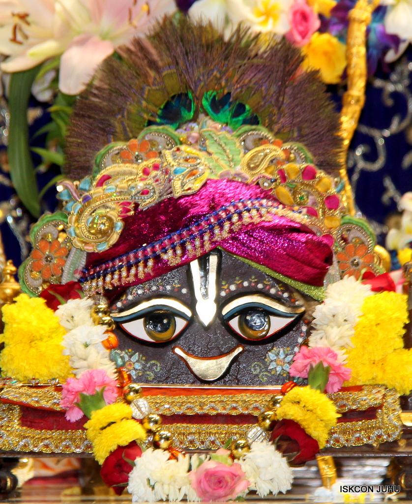 ISKCON Juhu Sringar Deity Darshan on 24th Oct 2016 (19)