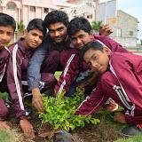 Gurukul Green Revolution (12).jpg