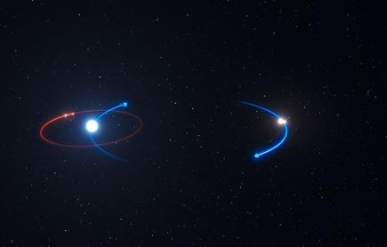 órbita do planeta e das estrelas do sistema