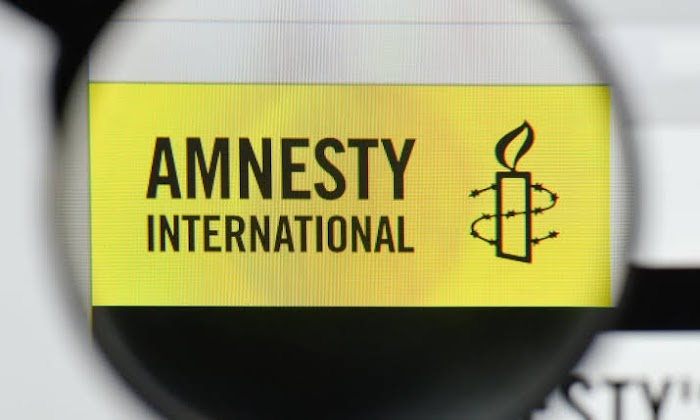 Compel Nigeria govt to stop the killings and protect lives and Properties - Amnesty Int'l tells the world